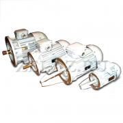 Двигатель асинхронный ДРО 12-2-02 фото 1