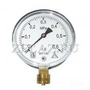 Манометр МТ-100 0,6 МПа (6 bar)- 100-1,5-G1/2 МТ-100 - фото