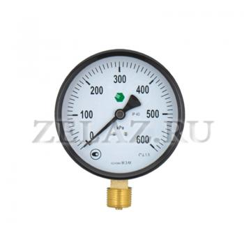 Манометр 600 кПа (6 bar)- 100-1,5-G1/2 М.3-М - фото