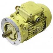 Двигатель 2ДМШ фото 1