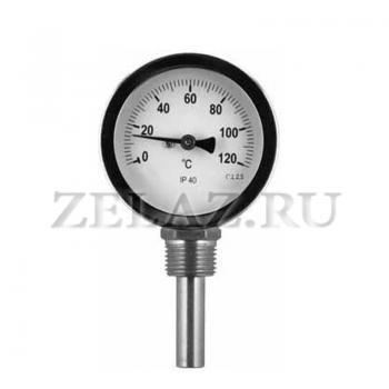 Термометр D63мм/L50мм-Р- ОСНОВА Т.2 - фото