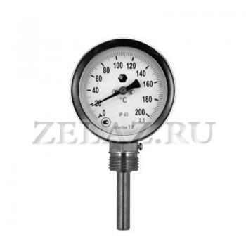 Термометр D63мм/L50мм-Р - фото